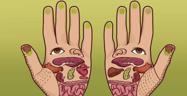 punti di digitopressione per dimagrire le mani